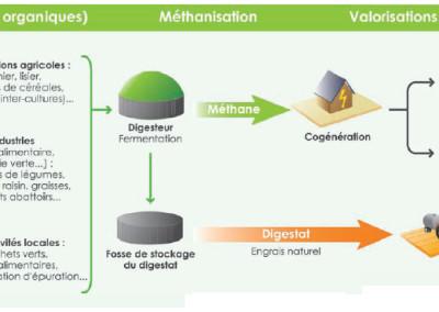 Biogas_Schema